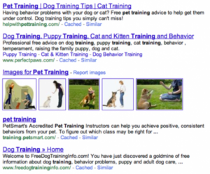 google-pet-training